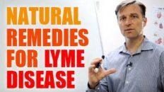Sanoviv: Tip and Tricks – Alternative Lyme Life
